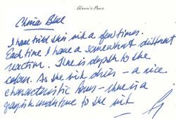 Diamine Ink - China Blue